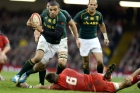 Brian Habana, South Africa